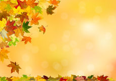 Autumn maple leaves falling. Down on natural background stock illustration