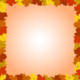 Autumn Maple Leaves Frame colorido cuadrado Imagenes de archivo