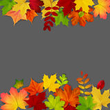 Autumn maple leaves frame on dark background Stock Image