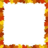 Autumn Maple Leaves Frame Isolated colorido cuadrado en blanco Imagen de archivo libre de regalías