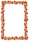 Autumn maple leaves frame. Vector illustration. Royalty Free Stock Photos