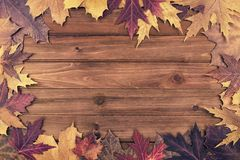 Autumn maple leaves over wooden background. Top view. Copy space in the middle Stock Photography