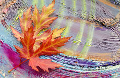 The autumn maple leaves on painted colorful wooden background. Royalty Free Stock Photos
