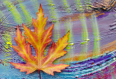 The autumn maple leaves on painted colorful wooden background. Stock Image