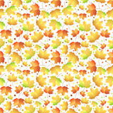 Autumn maple leaves pattern Stock Images