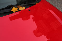 Autumn maple leaves on a red car. Stock Photos