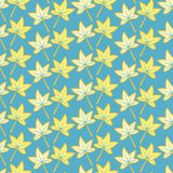 Autumn maple leaves, vector. Seamless background pattern of autumn maple leaves, vector vector illustration