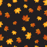 Autumn maple leaves seamless pattern background. Vector royalty free illustration