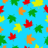 Autumn maple leaves. Seamless pattern with autumn maple leaves on turquoise background Royalty Free Stock Photo