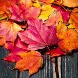 Autumn maple leaves on vintage dark wooden background with copys. Pace Stock Photos
