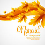 Autumn maple leaves on wave background Stock Photo