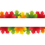 Autumn maple leaves with white banner. Vector illustration stock illustration