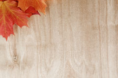 Autumn maple leaves on wood surface Stock Photo