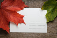 Autumn maple leaves on wood surface with paper card Royalty Free Stock Photography