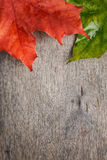 Autumn maple leaves on wood table Stock Image