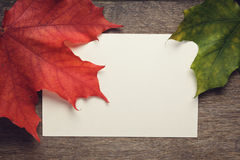 Autumn maple leaves on wood table Royalty Free Stock Photography