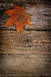 Autumn maple leaves on wooden background Stock Photo