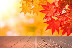 Autumn maple leaves and wooden floor Royalty Free Stock Images