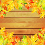 Autumn maple leaves and wooden planks Stock Image