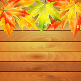 Autumn maple leaves and wooden planks Royalty Free Stock Photo