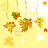 Autumn maple  leavse with sale Stock Photo