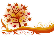 Autumn maple tree background. Autumn maple red tree background Royalty Free Stock Images