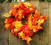 Autumn Maple Wreath Images libres de droits