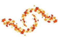 Autumn maples Stock Photography