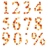 Autumn maples leaves numeral. Set. Vector illustration Stock Photo