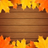 Autumn maples leaves on a wooden background. Royalty Free Stock Photo