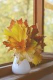 Autumn mapple leaves bunch Stock Photos