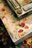 Autumn and marble Stock Images