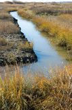 Autumn Marshland. Tidal marshland in the late fall, with autumn colors royalty free stock images