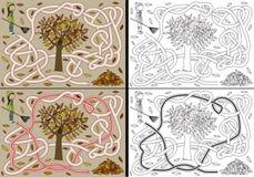 Autumn maze Royalty Free Stock Photography