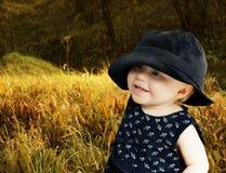 Autumn meadow Stock Photo