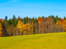 Autumn meadow and forest Stock Photos