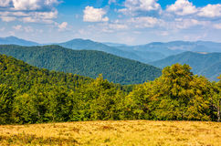 Autumn meadow on hillside of mountain range Royalty Free Stock Image