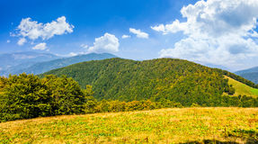 Autumn meadow on hillside of mountain range Stock Photos