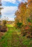 Autumn Meadow Landscape Stock Photo