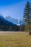 Autumn meadow in mountains Stock Photo