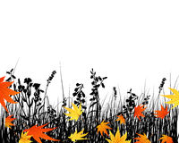 Autumn meadow silhouettes Stock Image