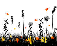 Autumn meadow silhouettes Stock Photo
