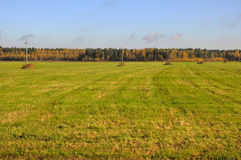 Autumn meadow with telegraph poles Stock Photography