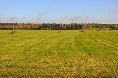 Autumn meadow with telegraph poles. The autumn meadow view with a line of telegraph poles stock photography