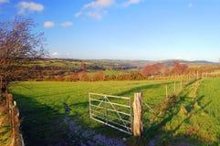 Autumn meadows Royalty Free Stock Photo