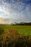 Autumn meadows in sunset vertical Stock Photo
