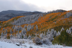 Autumn Meets Winter in the Rocky Mountains. Splashes of Autumn Remain as Winter Moves in stock photos