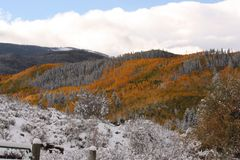 Autumn Meets Winter in the Rocky Mountains. Splashes of Autumn Remain as Winter Moves in royalty free stock image