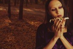 Autumn melancholy Royalty Free Stock Image