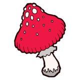 Autumn mellow amanita mushroom Stock Images